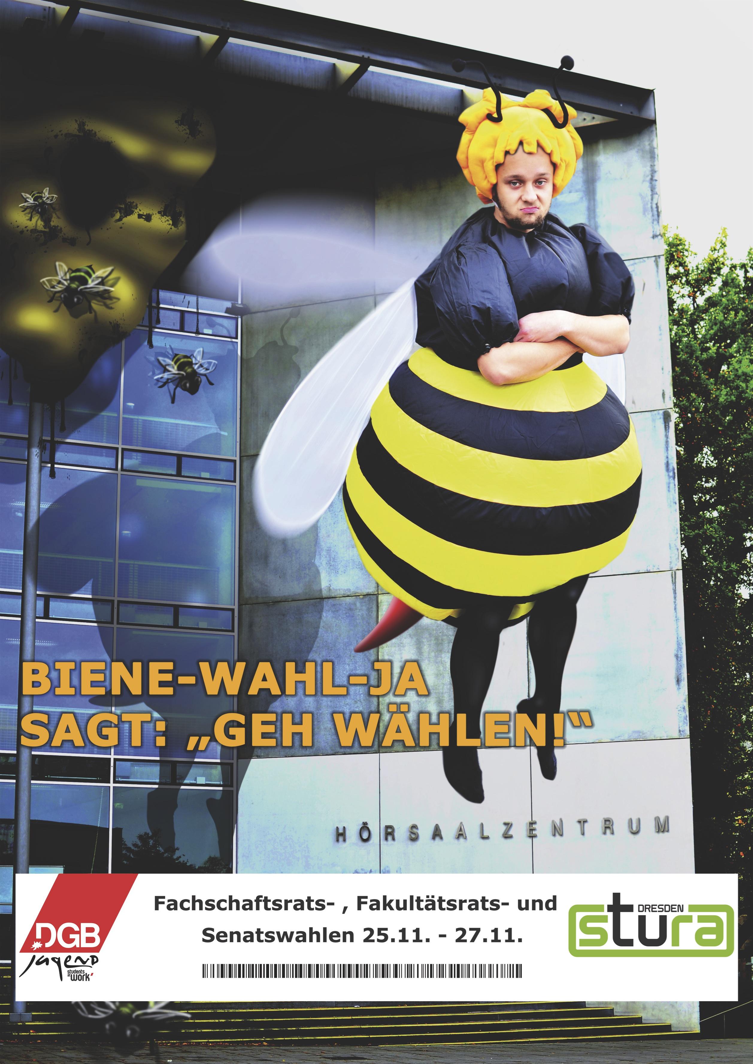 Biene Wahl-Ja