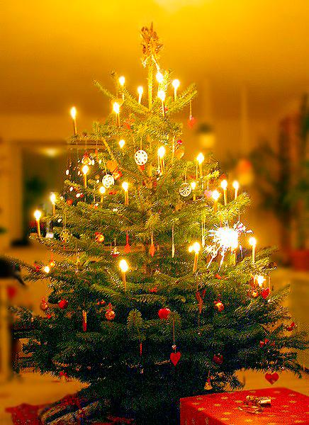 Ho Ho Ho Frohe Weihnachten.Ho Ho Ho Frohe Weihnachten Stura Tu Dresden